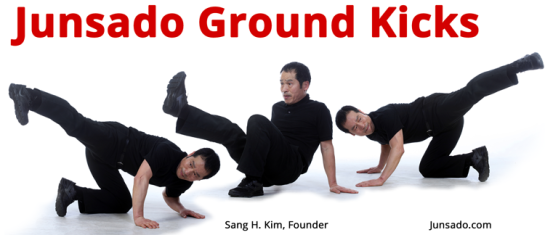 Junsado Ground Kicks